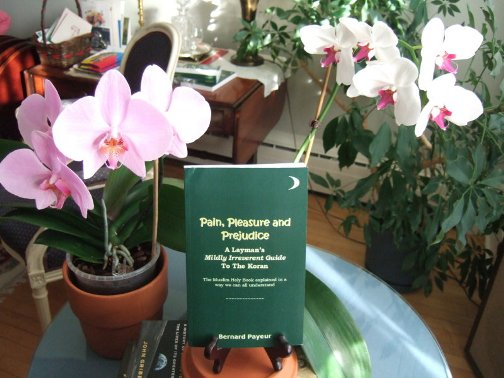 Orchids and the first Pain, Pleasure and Prejudice